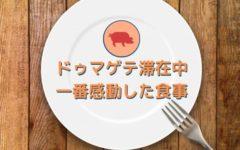 【SPEA体験記】ドゥマゲテで感動したレストラン【24日目】